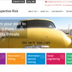 Perspective Risk website