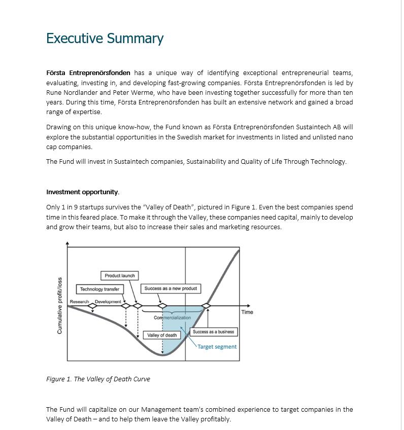 Första Entreprenörsfonden - investment proposal document