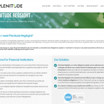 Plenitude Consulting - FinTech sales aid